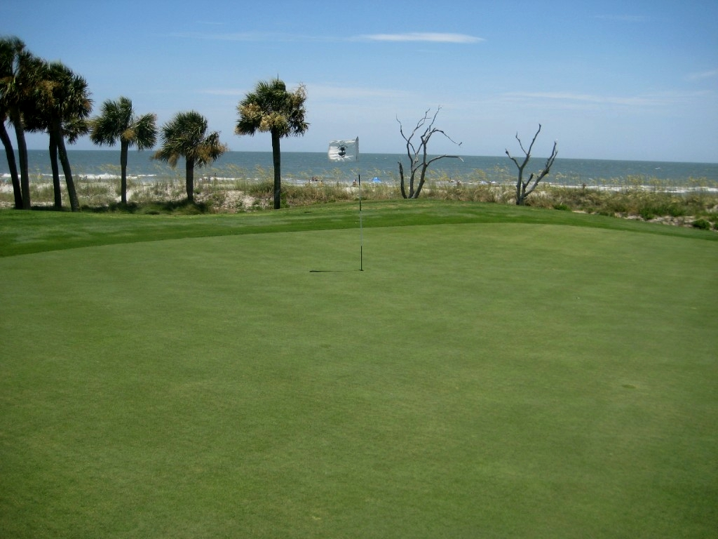 Beginner golf courses hilton head